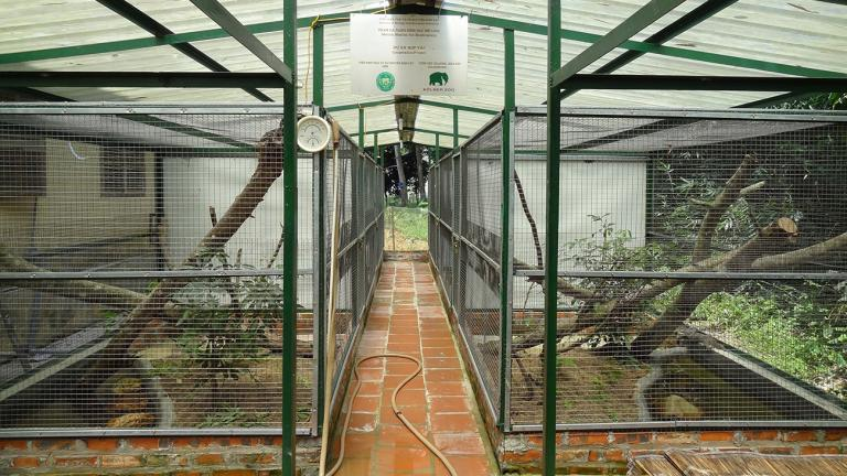 Among other things, the Me Linh Station serves as a sanctuary for confiscated or injured animals, which are nursed back to health and prepared for possible reintroduction into the wild. Monitor lizards are frequent visitors in the station. Here, they can be cared for appropriately. | Thomas Ziegler