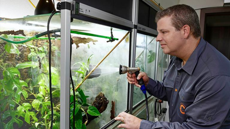 Tobias has made a dream come true with his new house. Right from the start, he included the technical requirements for a terrarium room and an energy-saving water supply system. Here, he breeds numerous species of frogs. | Benny Trapp, Frogs & Friends