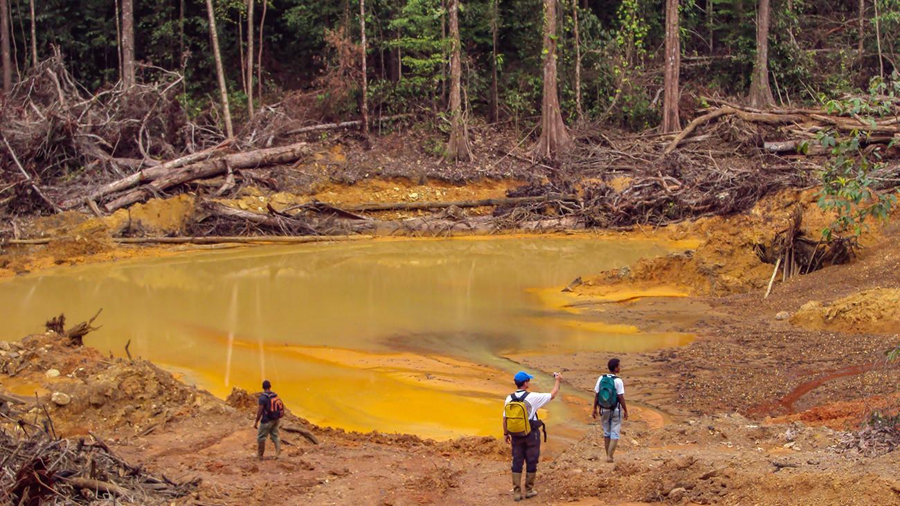 Bei der Goldsuche werden giftige Chemikalien eingesetzt. Zurück bleiben toxische Abwasser-Seen. | Kakteen, Shutterstock