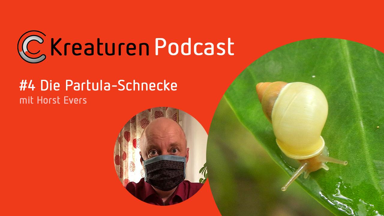 Der Geschichtenerzähler Horst Evers zeigt sich in Folge 4 fasziniert von den Geheimnissen der Partula-Schnecke.