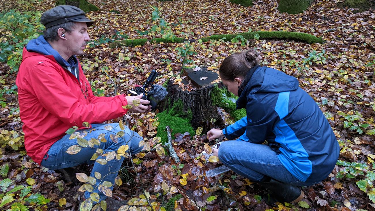 Frogs & Friends-Kameramann Leendert de Jong dokumentiert die Arbeit von Biologin Carolin Dittrich im Steigerwald | Frogs & Friends