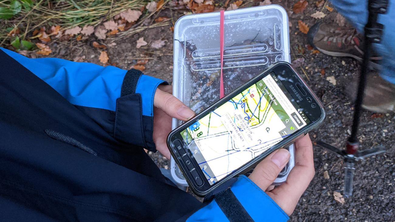 Der Sprung des Pilzes über 500 Kilometer ist ein Alarmsignal: Es gibt keine Salamanderpopulationen mehr, die man als sicher bezeichnen kann. | Frogs & Friends